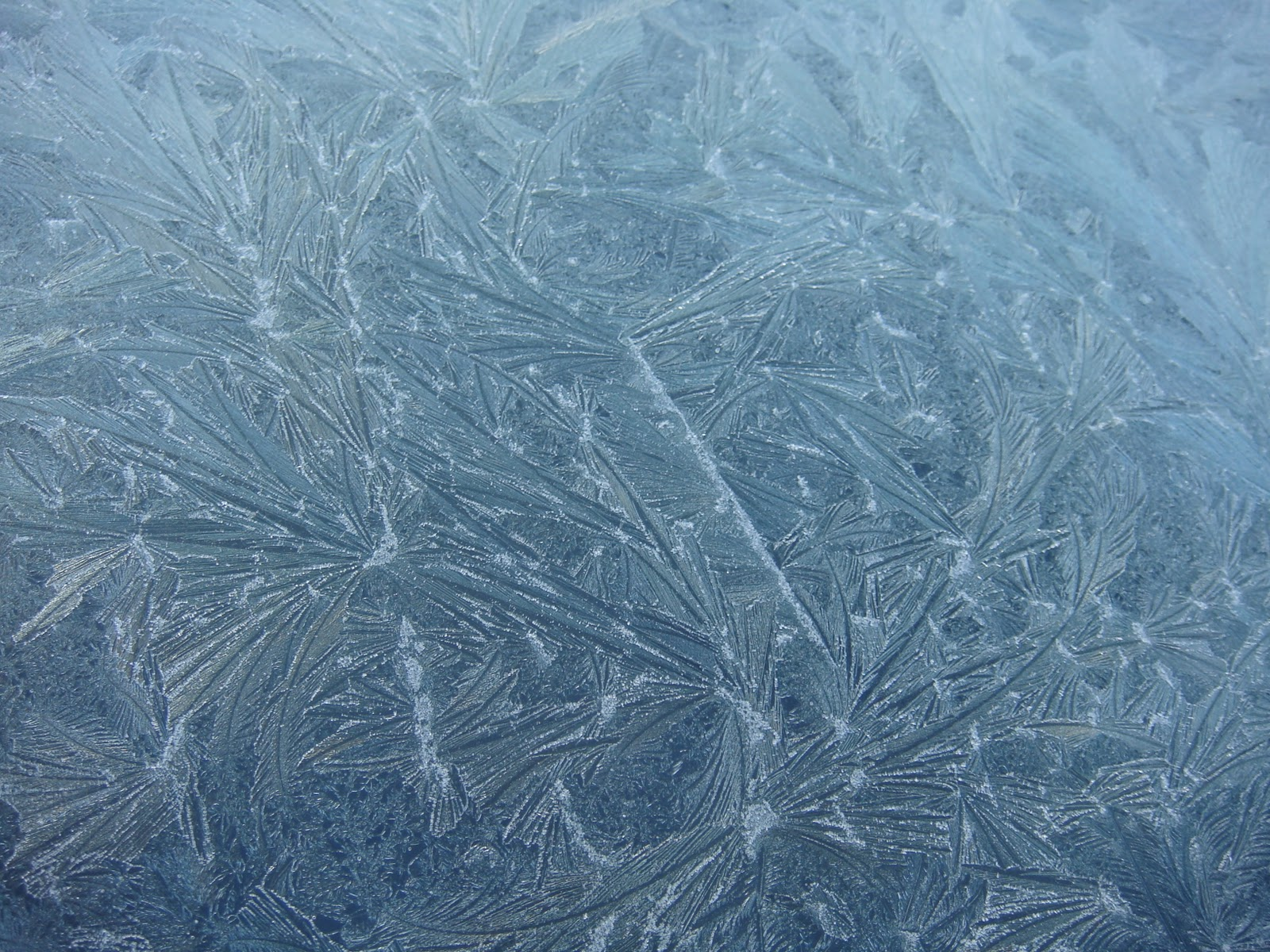 icy-windscreen